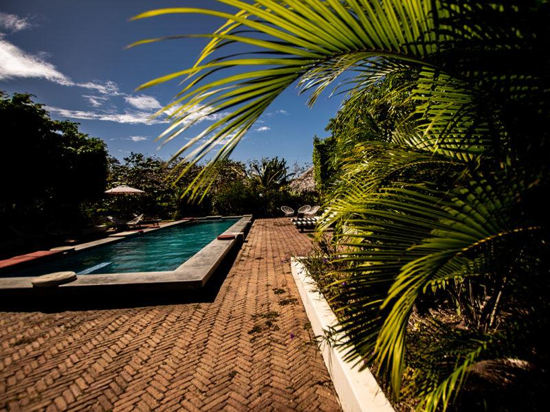 The Pool at Malibu Popoyo Resort